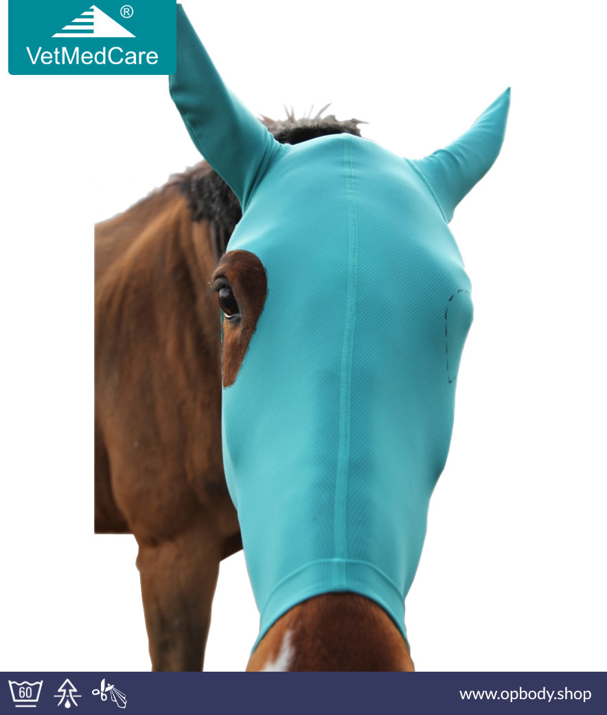 Horse Head Mask To Protect Head And Ears Without Eye Cutout Vetmedcare Vetmedcare Op Bodysuits Shop